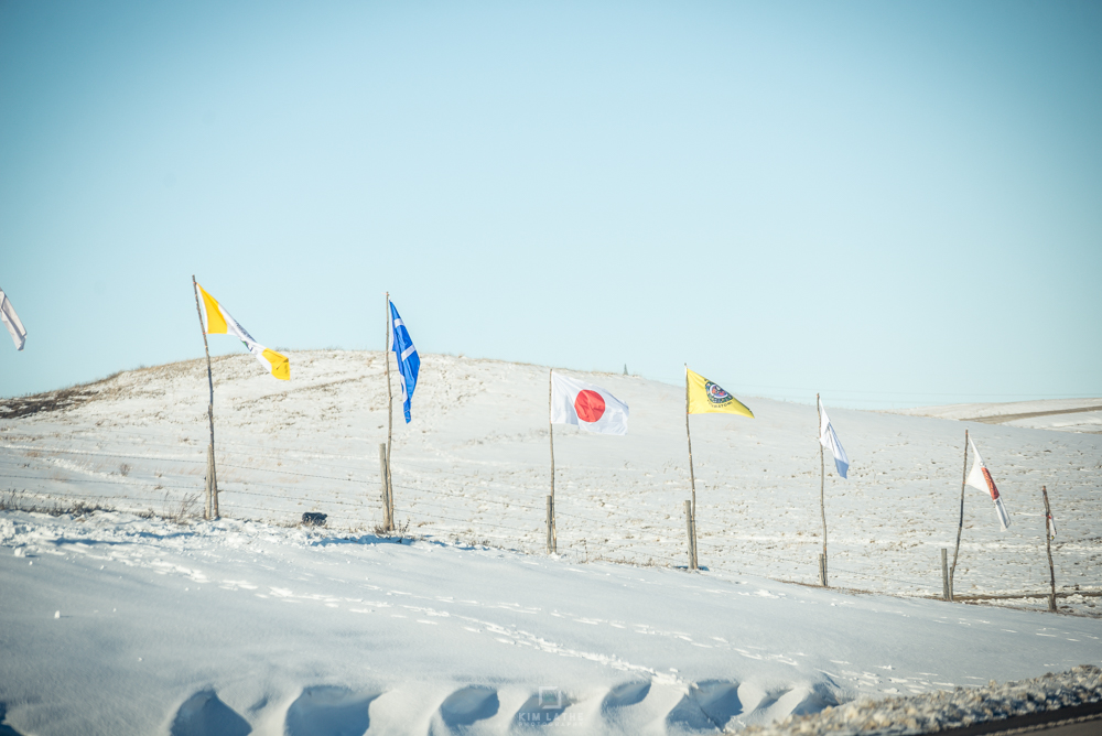 flags outside camp