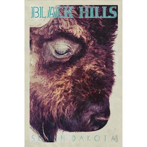 Black Hills Poster (Design 13)